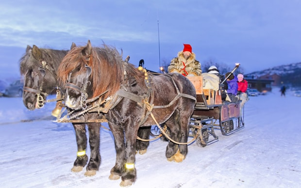 norway-sleigh